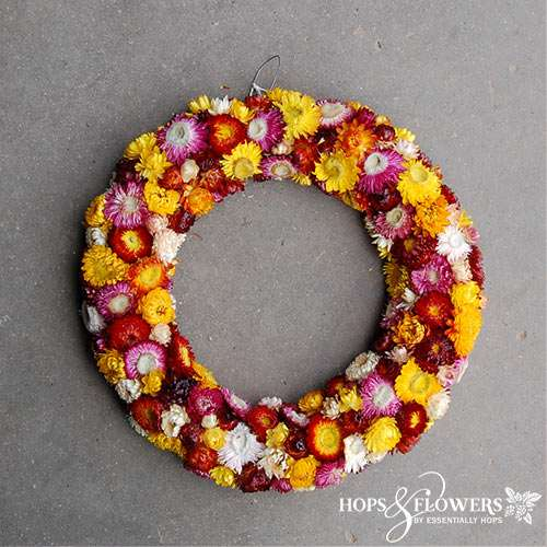 Helichrysum Wreath